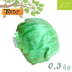 Jäävuorisalaatti, 0,3 kg